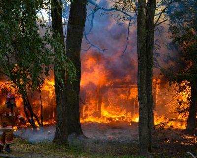 Prevenção de Incêndios Florestais
