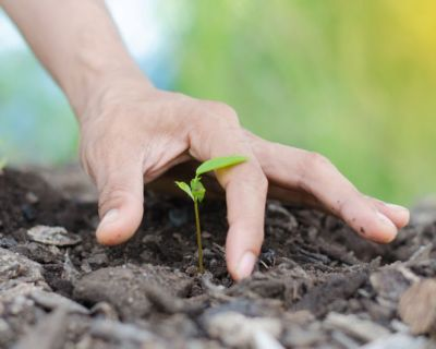 Agricultura Sustentável - Formação Base Jovem Agricultor