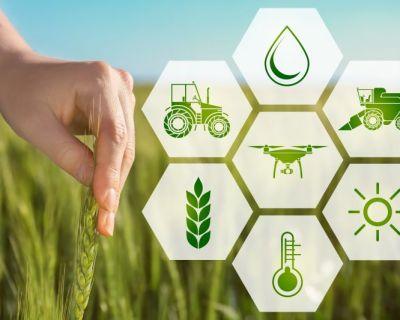 Gestão da Empresa Agrícola